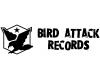bird-attack-records